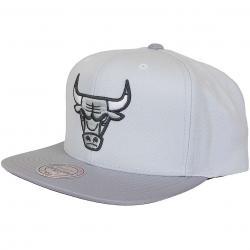 Mitchell & Ness Snapback Cap Grey 2 Tone Plus Series Chicago Bull grau