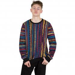Iriedaily Sweatshirt Theodore mehrfarbig