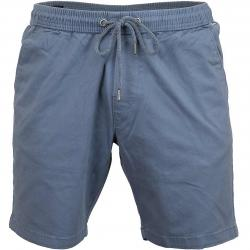 Reell Shorts Easy graublau