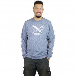 Iriedaily Sweatshirt Chamisso 2 Logo blau
