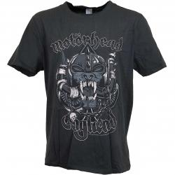 Amplified T-Shirt Motorhead Snaggletooth Cr dunkelgrau