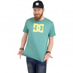 DC Shoes T-Shirt Star grün