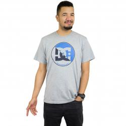 DC Shoes T-Shirt Up Shore grau