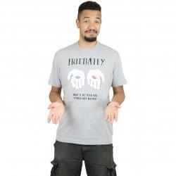 Iriedaily T-Shirt It Doesnt Matter grau
