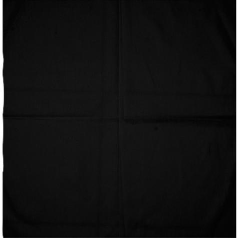MasterDis Bandana Blank black