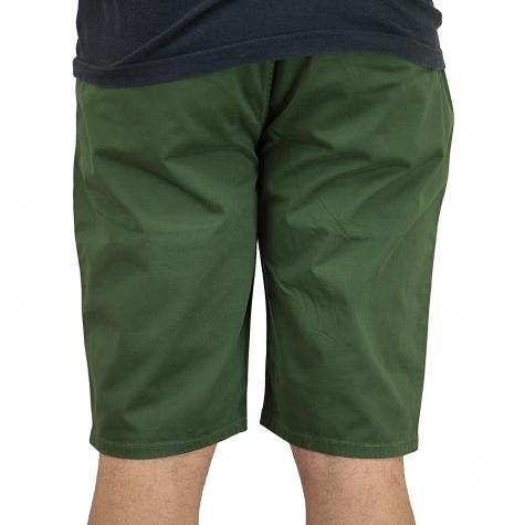 Element Shorts Howland rif. grün
