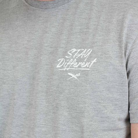 Iriedaily T-Shirt Bye Bye Cat grau